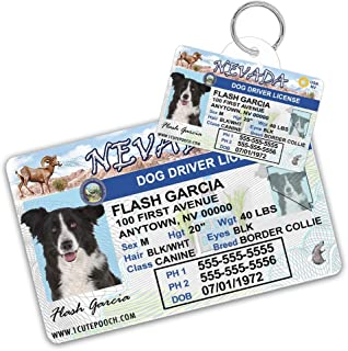 Nevada Driver License Custom Dog Tag for Pets and Wallet Card - Personalized Pet ID Tags - Dog Tags For Dogs - Dog ID Tag - Personalized Dog ID Tags - Cat ID Tags - Pet ID Tags For Cats