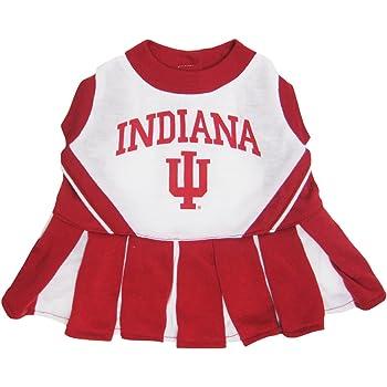 NCAA Illinois Fighting Illini Cheerleader Dog Dress
