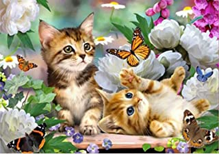 Holly LifePro DIY 5D Diamond Painting Kits for Adults, Full Drill Colorful Cat Crystal Rhinestone Embroidery Pictures Arts...