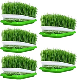 Aptech Seed Sprouter Tray, 5 Pack Seed Germination Tray Double-Deck BPA Free Nursery Seed Germination Tray for Seedling Pl...