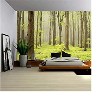 wall26 - Green Misty Forest Mural - Wall Mural, Removable Sticker, Home Decor - 100x144 inches