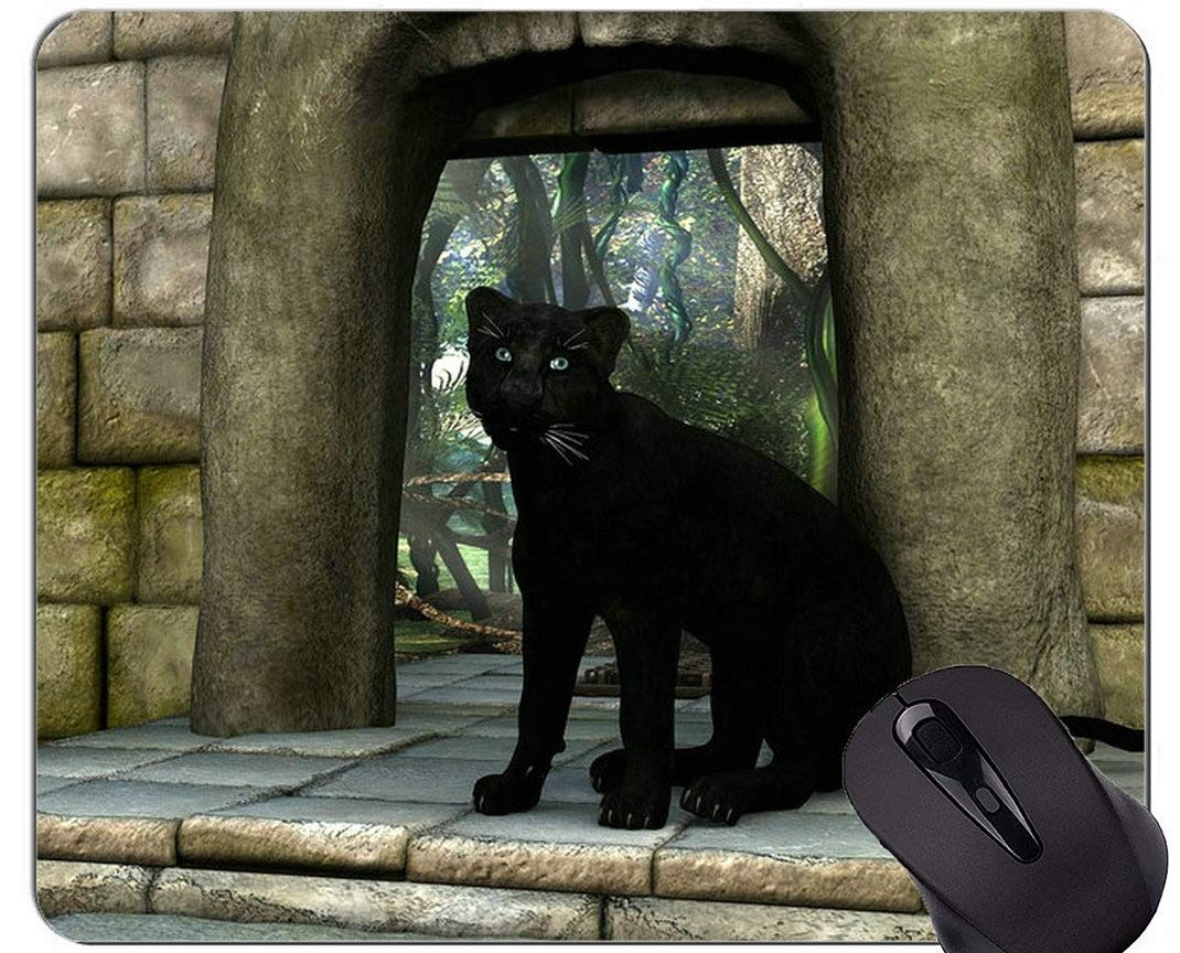 Alfombrilla de ratón con Borde de Bloqueo, Familia de Gatos Pantera Alfombrillas para ratón Leopardo: Amazon.es: Electrónica