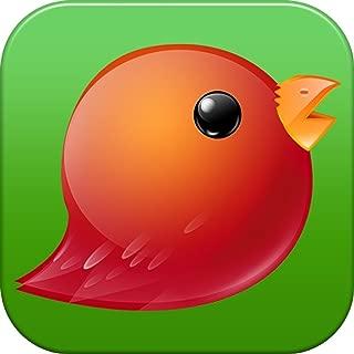 Angry Birds Go! (Remix)
