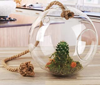 Circleware 32512 Nature Grow Glass Round Hanging Terrarium on Rope Home Decor Flower Balcony Display Box and Garden Gifts 7.87