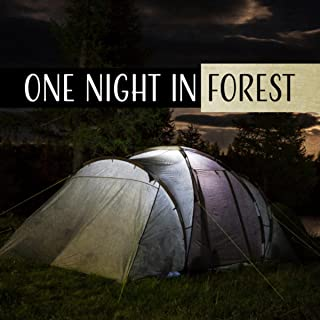 One Night in Forest (Enchanted Flute, Warm of Tranquil Fire, Relaxing Ambient of European Woodland, Harmony & Mental Regeneration)