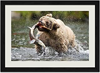 R.Maltto Bear catching a fish - Art Print Wall Hang Black Wood Frame Poster Framed Picture Home Decor(16x12inch)