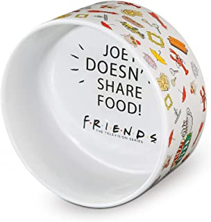 """Warner Bros Friends TV Show""""Joey Doesn't Share Food"""" Ceramic Dog Food Bowl, 6 In 