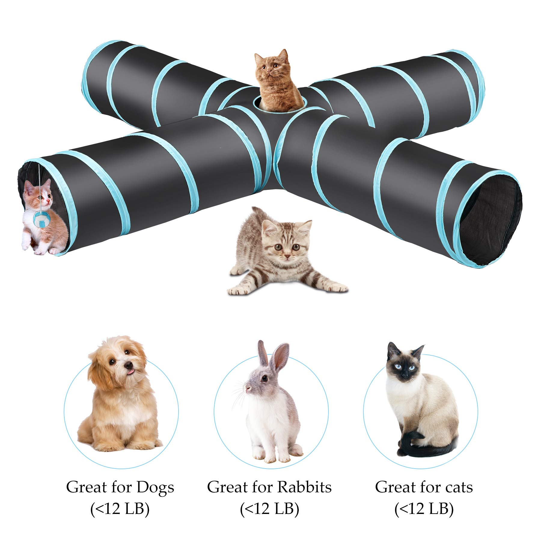 CO-Z Collapsible Cat Tunnel Tube Kitty Tunnel Bored Cat Pet Toys Peek Hole  Toy Ball Cat, Puppy, Kitty, Kitten, Rabbit Size Pillow-275 4-Way Black  PTW-CTT4-65: Amazon.ae