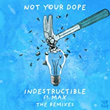 Indestructible (feat. MAX) (The Remixes)