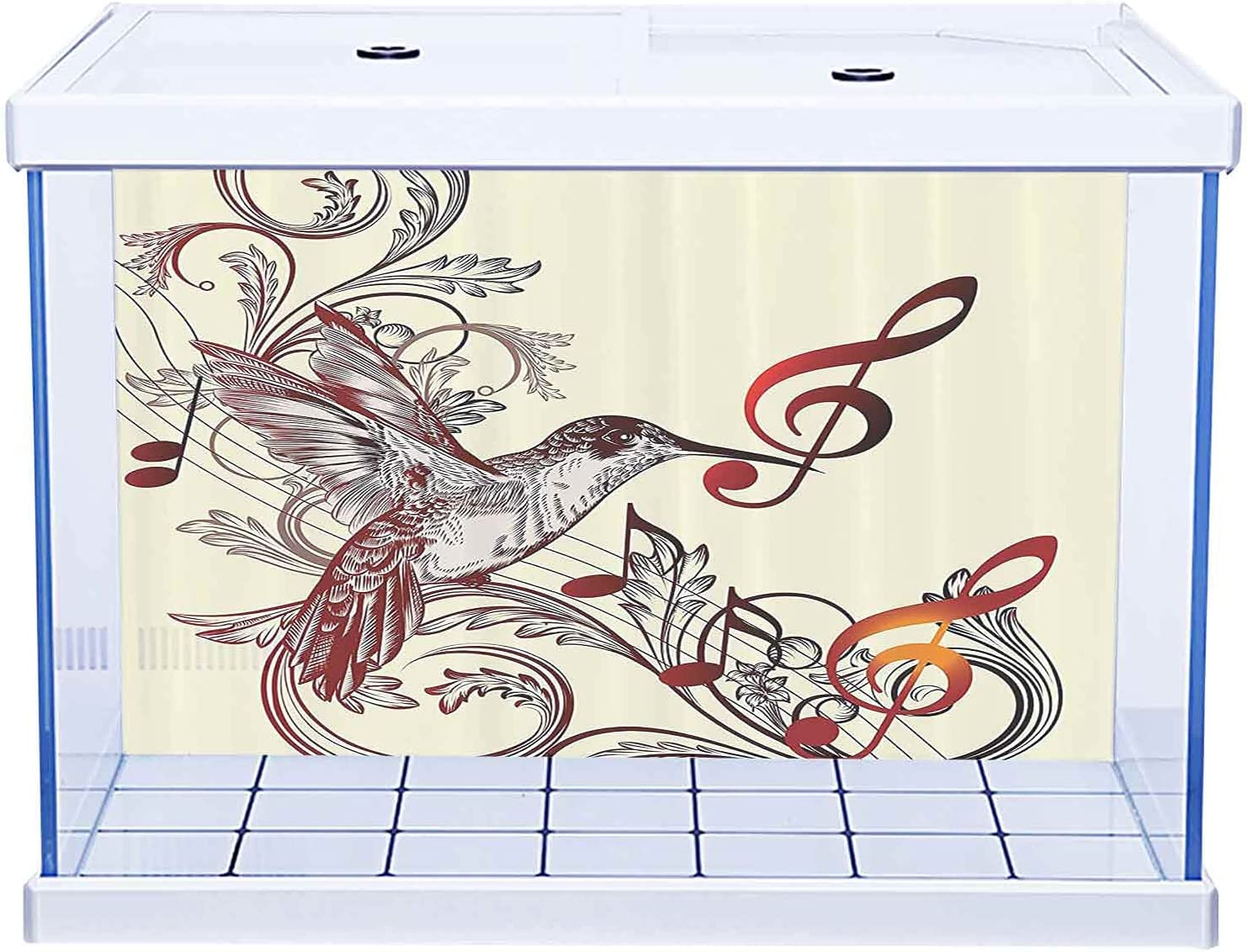 Fish Tank Terrarium Aquarium Hummingbirds Background Poster Today's only Deco Safety and trust