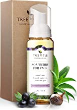Ultra Hydrating Gentle Face Wash for Dry Skin by Tree To Tub - pH 5.5 Balanced Daily Face Wash for Sensitive Skin. Foaming Face Wash from Wild Soapberries, Organic Aloe Vera 4 oz