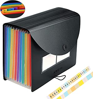Accordian File Organizer