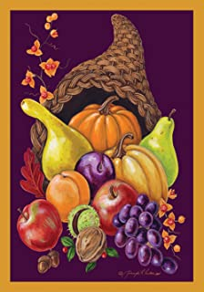 Toland Home Garden Cornucopia 28 x 40 Inch Decorative Colorful Fall Autumn Harvest Fruit Thanksgiving House Flag