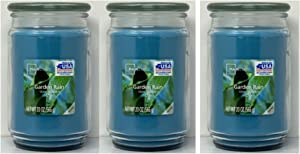 Mainstays 20oz Garden Rain Scented Candles, 3-Pack