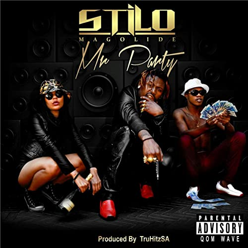 stilo magolide mr party music video