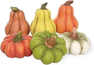 Boston International Pumpkin Patch Gourds, Set of 6, Mini Pumpkins & Gourds