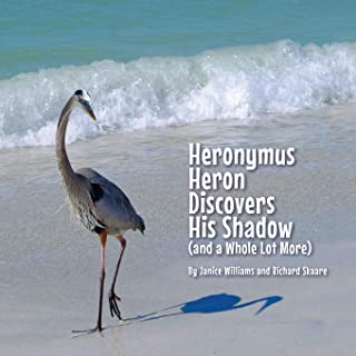 Heronymus Heron Discovers His Shadow: (and a Whole Lot More)
