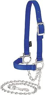 Weaver Leather Livestock Nylon Adjustable Sheep Halter with Chain Lead