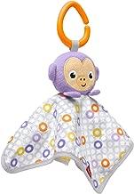 Fisher-Price Peek-A-Boo Plush, Monkey