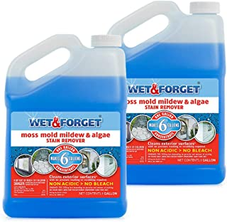Wet and Forget Moss, Mold, Mildew & Algae Stain Remover, 1 Gallon Concentrate Make 6 Gallons - 2 Pack