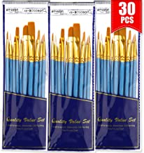 BOSOBO Paint Brushes Set, 30 Pcs Round-Pointed Tip Artist Paintbrushes for Acrylic Watercolor Oil Painting, Face Body Nail...