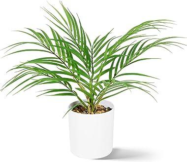 CROSOFMI Plantes Artificielles Interieur 40 cm Mini Palmier en Plastique Pot Fausse Plante Le Salon Bureau Balcon Verte Moder