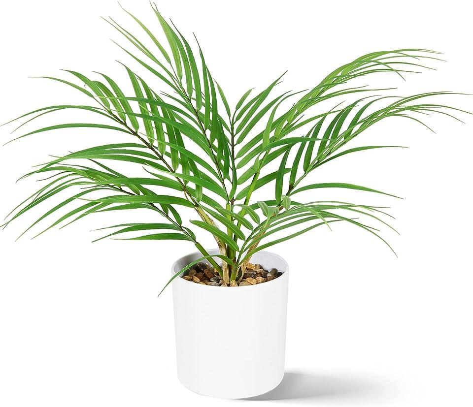 CROSOFMI Kunstpflanze 40 cm Mini Künstliche Pflanze Areca Palme Kunstpflanzen im Plastik Blumentopf Badezimmer Wohnzimmer Büro Küche Modern Grün Deko (1 Pack)