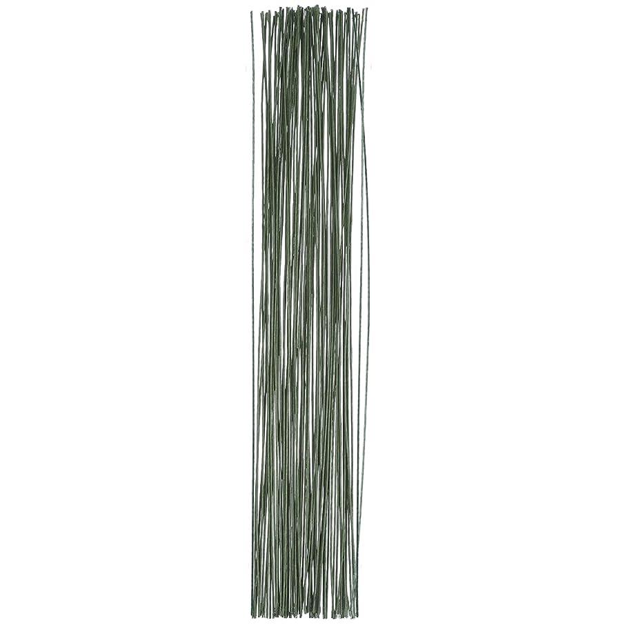 eBoot Floral Stem Wire 18 Gauge Wire 14 Inch, 50 Pack (Dark Green)