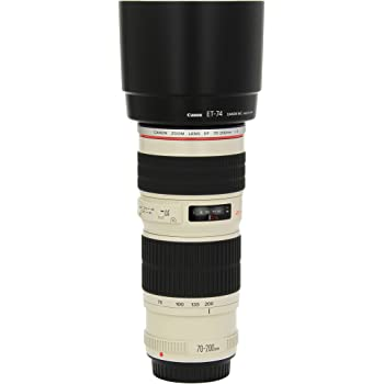 Canon EF 70-200mm f/4L USM Telephoto Zoom Lens for Canon SLR Cameras, Lens Only