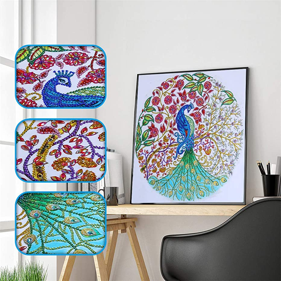 DIY 5D Special Shaped Diamond Painting by Number Kits, Section Drill Rhinestone Embroidery Cross Stitch Pictures for Home Decor Ross Beauty (Peacock)