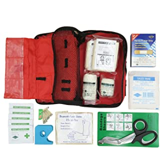 Alcare Pouch First Aid Kit for Personal