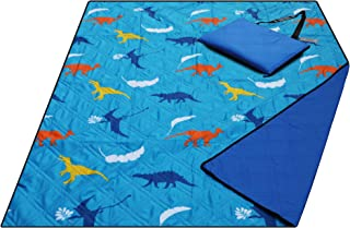 kids beach blanket