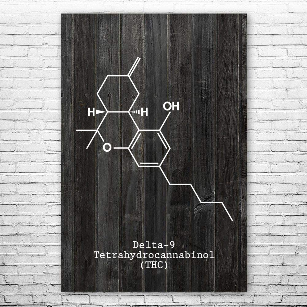 本物 Patent Earth THC Molecule 授与 Poster Gif Stoner Cannabis Art Print