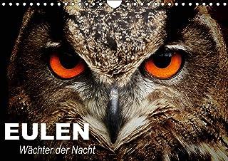 Eulen. Wächter der Nacht (Wandkalender 2021 DIN A4 quer): Die mystischen Waldbewohner mit großer Fan-Gemeinde (Geburtstagskalender, 14 Seiten )