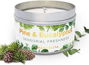 Chandelita Scented Aromatherapy Candle of Pine and Eucalyptus with Chunks to Improve Our Attention, Concentration, Stimula...
