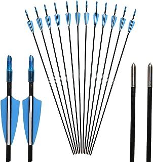 Arco y Flecha: 12 Flechas para Tiro con Arco 31 Pulgadas