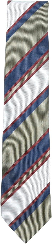 Bigi Cravatte-Milano Men's Diagonal Multi Striped Necktie