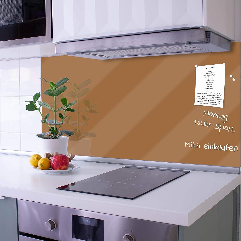 Motiv Nautilus banjado Küchenrückwand Fliesenspiegel Glas Spritzschutz Küche m