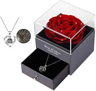 Preserved Real Rose with Silver-Tone Heart Necklace I Love You in 100 Languages Gift Set, Enchanted Real Rose Flower for Valentine's Day Anniversary Wedding Romantic Gifts for her (Red with Crystal)