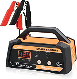 Best bikemaster lithium ion battery charger Reviews