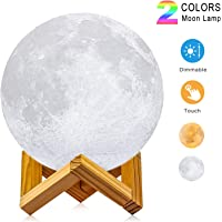 LOGROTATE 3D Printing LED Night Lunar Moon Light Lamp with Stand and Warm & Cool Two Colors and Dimmable & USB Rechargeable (Diameter 4.7 inch)