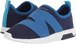 Regatta Blue/Victoria Blue/Shell White