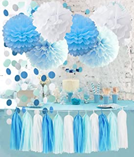 Birthday Party Decorations Baby Blue White Turquoise Blue Tissue Paper Pom Poms Snow Theme Party Decor Baby Boy First Birt...