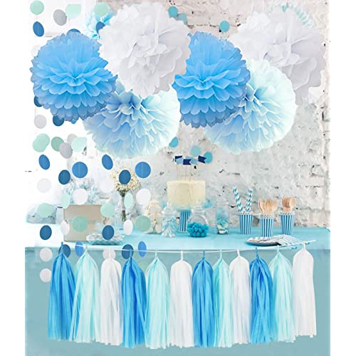 Birthday Party Decorations Baby Blue White Turquoise Tissue Paper Pom Poms Snow Theme Decor