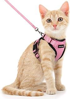 Dooradar Cat Harness and Leash for Walking, Escape Proof Pet Harness, Adjustable Soft Mesh Vest Jacket with Reflective Str...