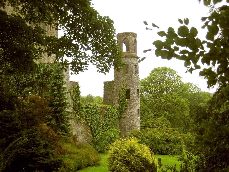 Lais Jigsaw Ireland Blarney Castle Cork 2000 pieces