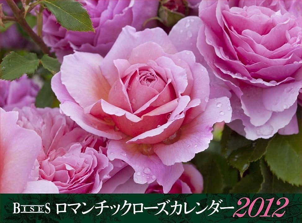 趣味インタフェース教科書ロマンチックローズ カレンダー2012 ([カレンダー])