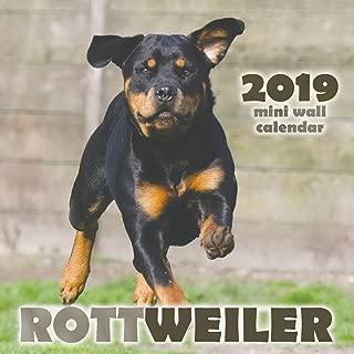 Rottweiler 2019 Mini Wall Calendar