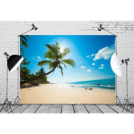 Tropical Decor Underwater World Backdrop Exotic Sunset Above Sea Scene from Coconut Palm Tree Leaf Heaven Picture Photography Background Undersea Backdrop Pink Orange L24 X H16 Inch