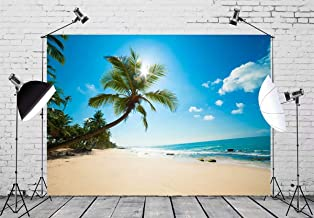 BELECO 10x6.5ft Tropical Beach Backdrop Tropical Sand Beach with Palm Trees Ocean Summer Hawaii Phtography Backdrop for Luau Party Decoration Birthday Banner Photoshoot Photo Background Props